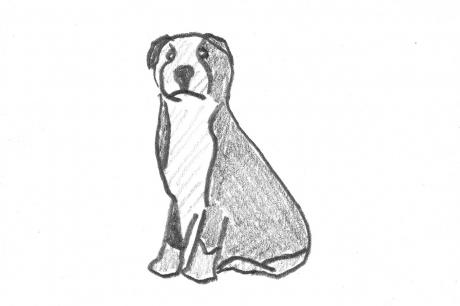 Dogheart