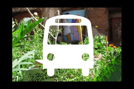 Urban Farming Bus Tour